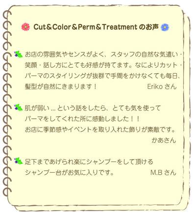 カット&カラー&パーマ&トリートメントお声.jpg
